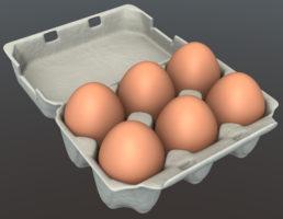 papper egg carton