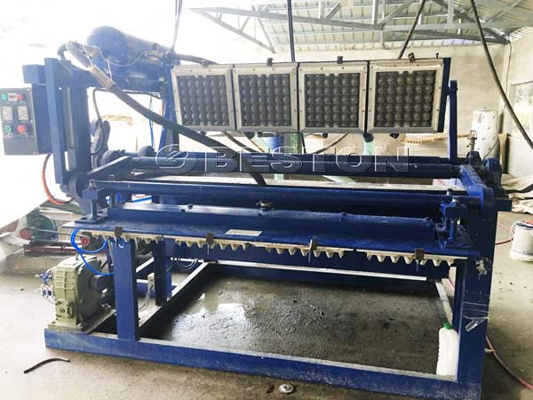 1500pcs Egg Tray Machine in Phillipines